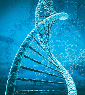 DNAcut_web